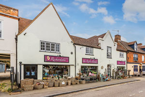 Commercial investment opportunity in Haslemere